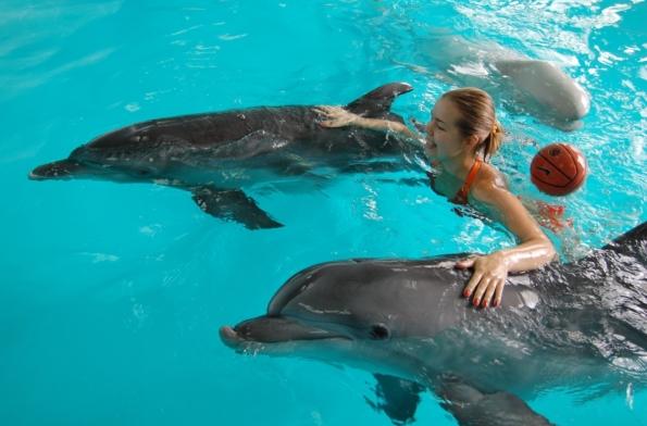 Девушка с дельфинами фото