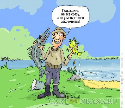 анекдот про мужика и медведя который рыбу ловили