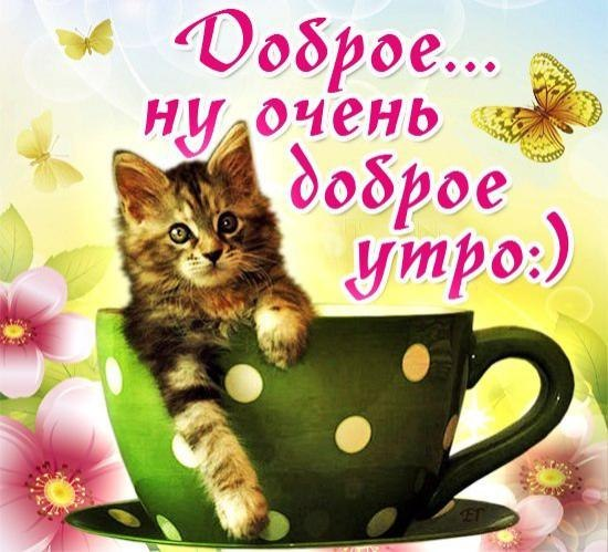Поздравить с добрым утром в картинках