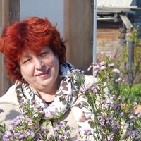 Любовь, 63 года, Овен, Томск