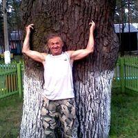 Сергей, 69 лет, Стрелец, Енакиево