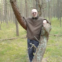 Владимир, 64 года, Козерог, Калининград