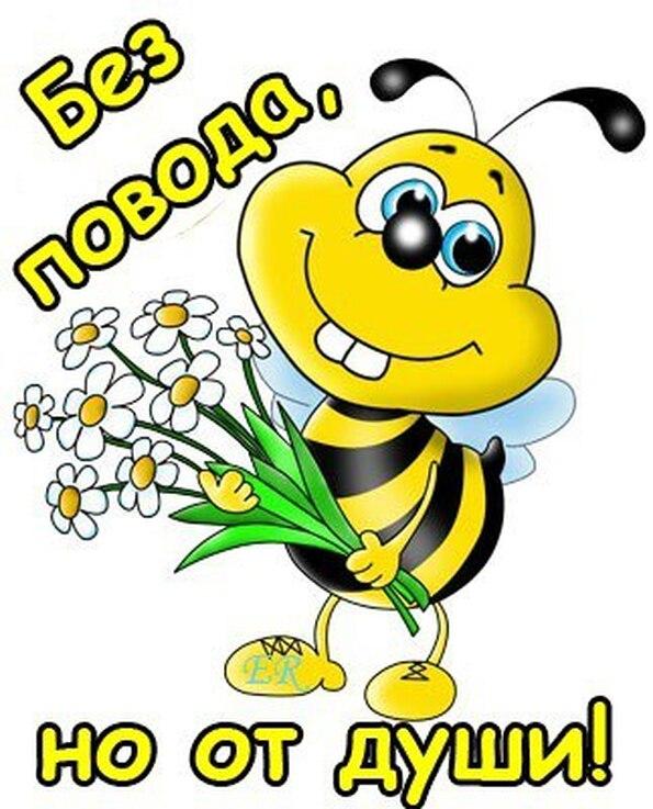 Поздравления от пчелок