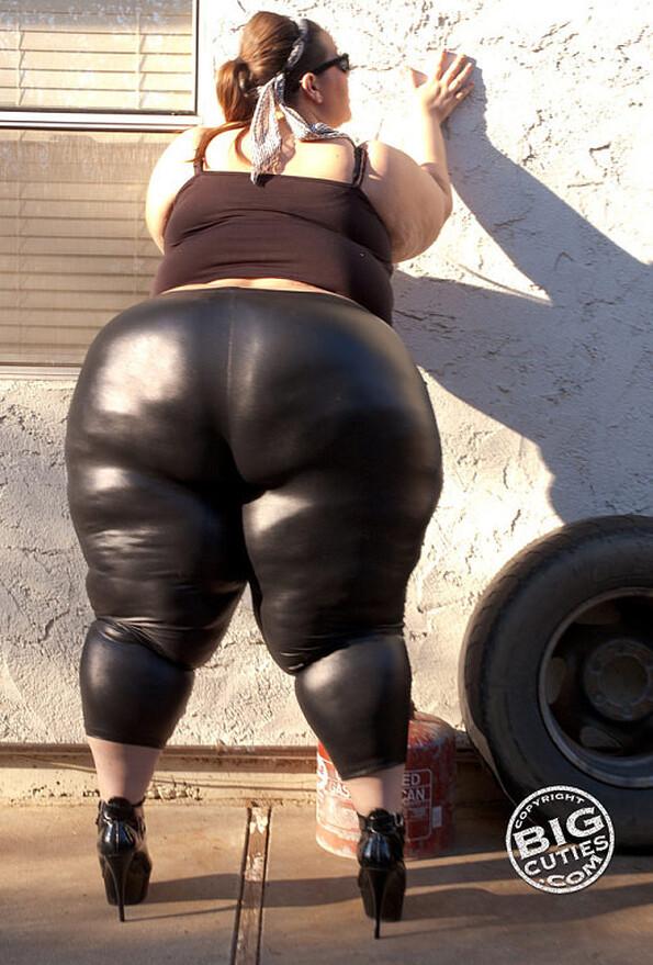 Толстая попка в лосинах фото 31-944