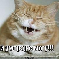 Сергей, 27 лет, Козерог, Сухум