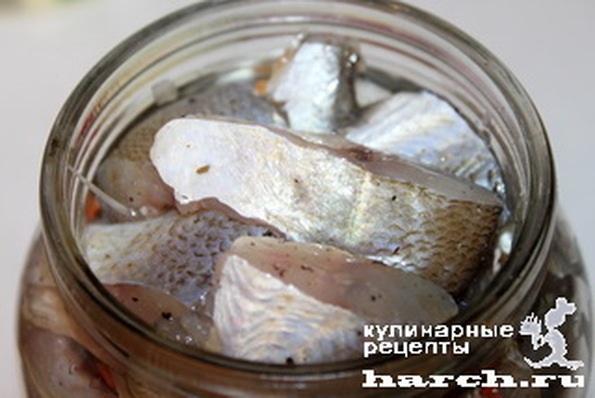 Рыба в масле консерв. в домашних условиях
