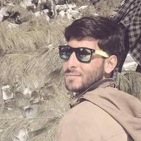 mir Saleem, 32 года, Телец, Мангалор