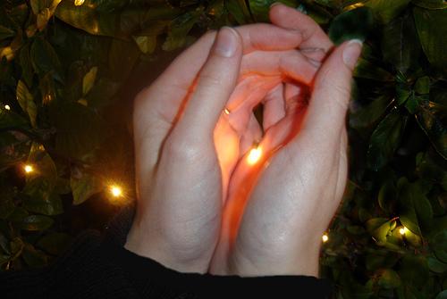 Светлячки как они светятся