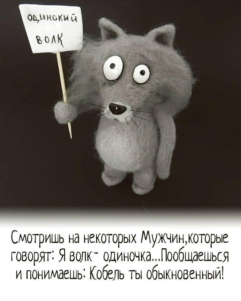 Знакомства одинокий волк