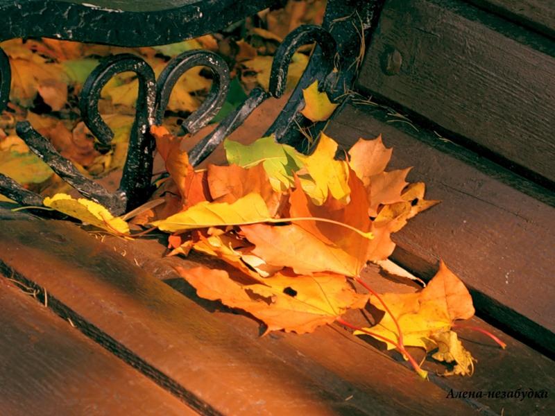 блюз опадающих листьев картинки вот