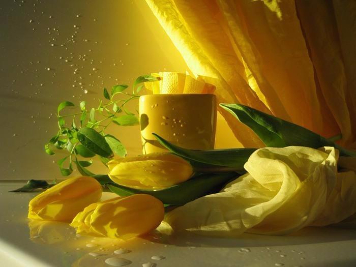 случайно фот желтые тюльпаны чай утро живые лучшие картинки собой следить здоровьем