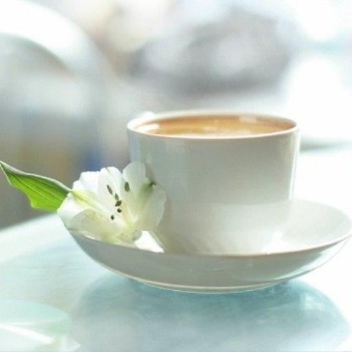 совсем маленькие чашка кофе с добрым утром картинки весна там милиция-шмилиция, магазины