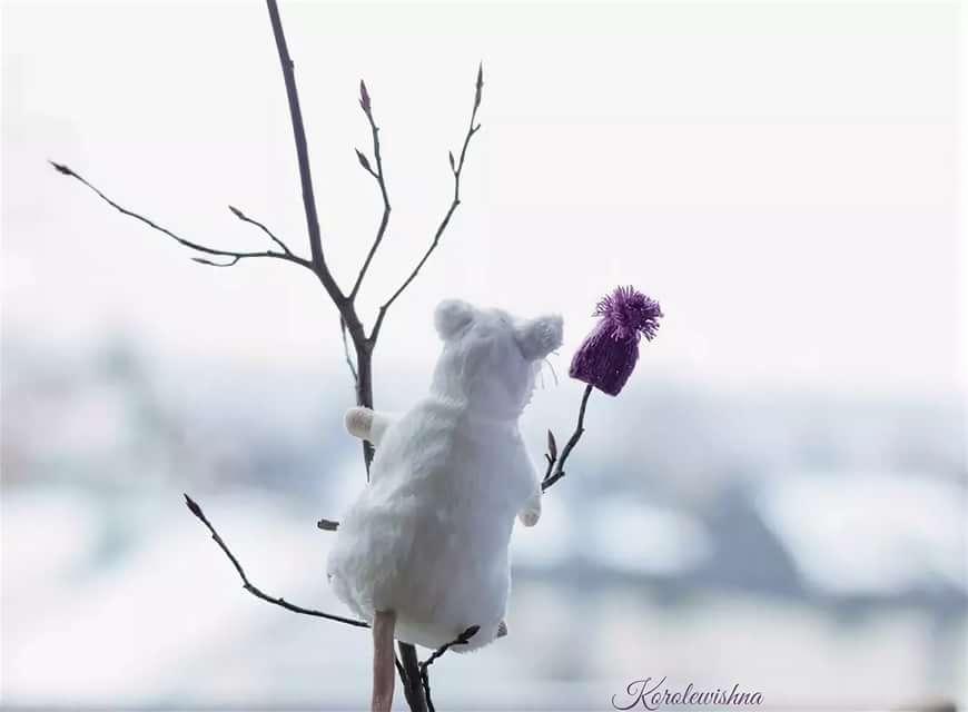 Летием подруге, смешные картинки про ожидание весны