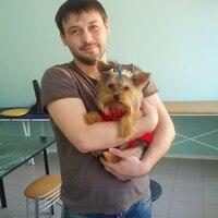 Виктор, 38 лет, Рыбы, Ростов-на-Дону