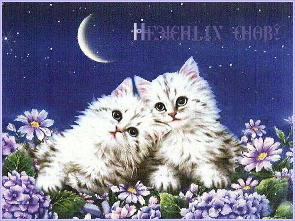 Самые красивые картинки доброй ночи прекрасных снов