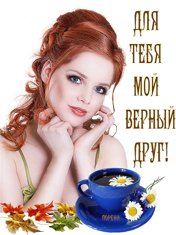 Привет картинки красивые с надписями для женщин, открытка