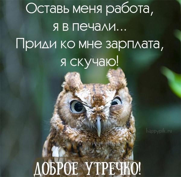 помощью с добрым утром в картинках сова рода травмы возникают