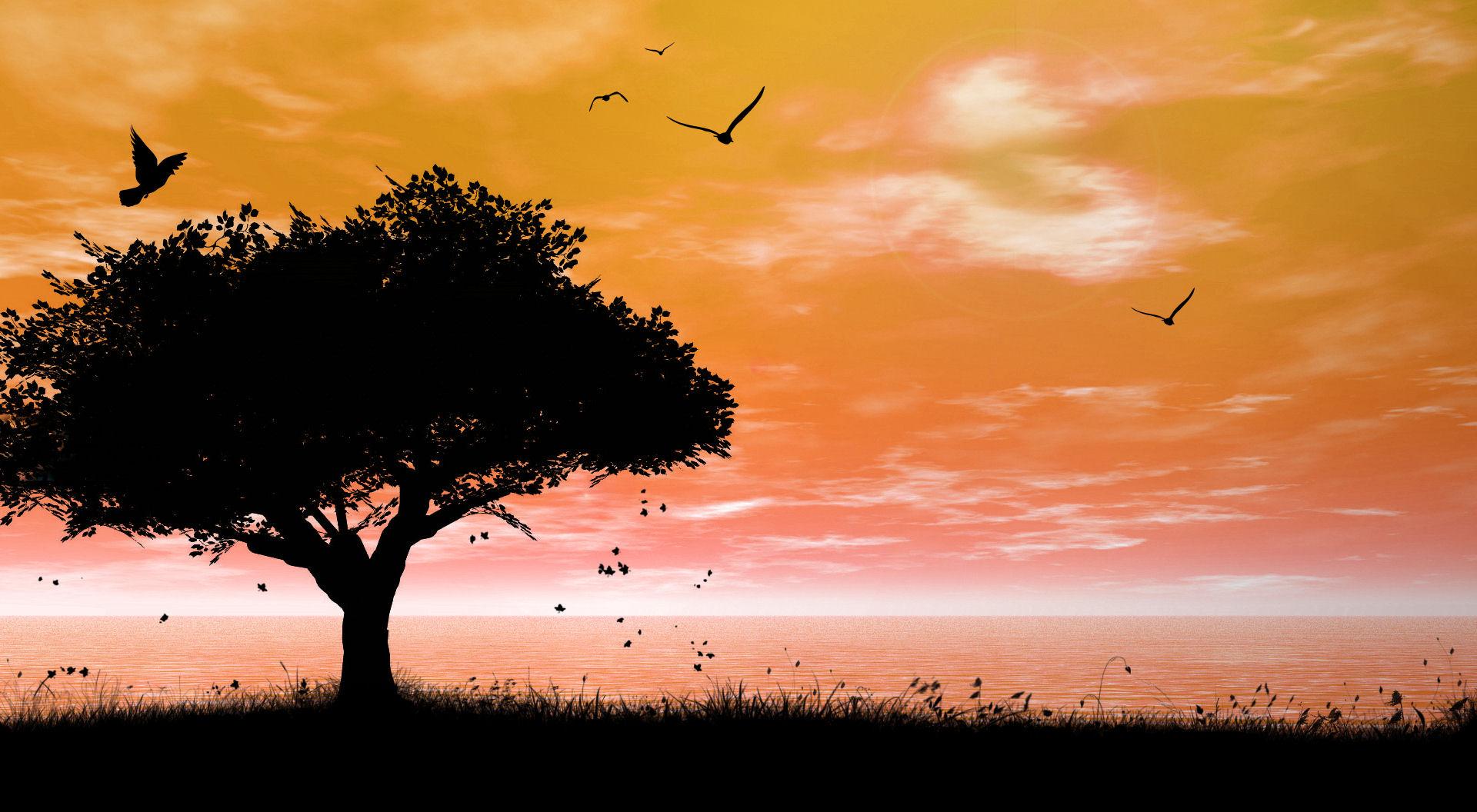 Открытка, картинки спокойной ночи с надписью красивая природа