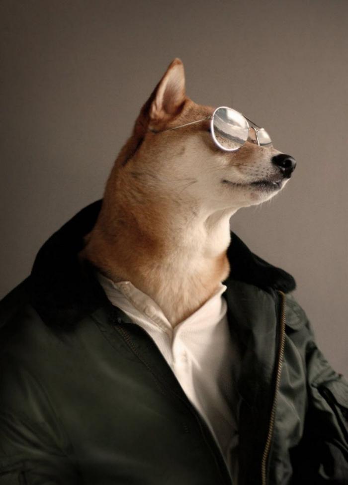 Смешные картинки человек с собакой, спасибо
