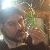 david, 48 лет, Стрелец, Сан - Луис-Обиспо