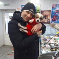 Андрей, 32 года, Овен, Вологда