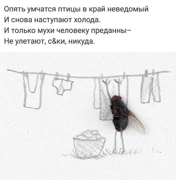 Даче, и вот полетели белые мухи прикольные стихи картинки