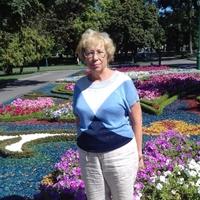 Лариса, 69 лет, Водолей, Харьков